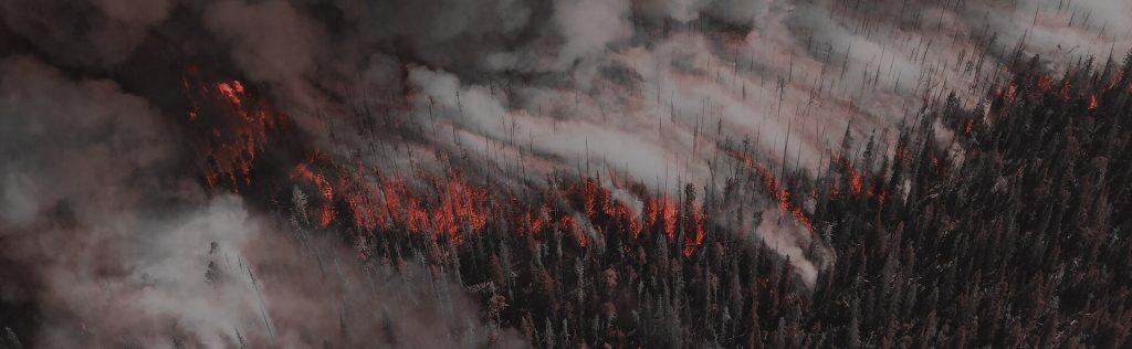 Butte campfire lawyers deadline